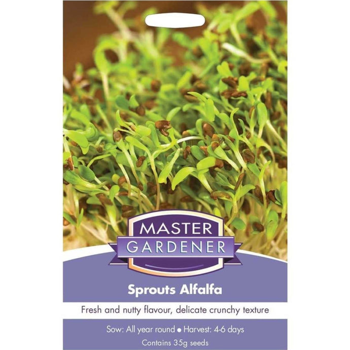 MASTER GARDENER Seeds -  Alfalfa Sprouts- (Not to WA)