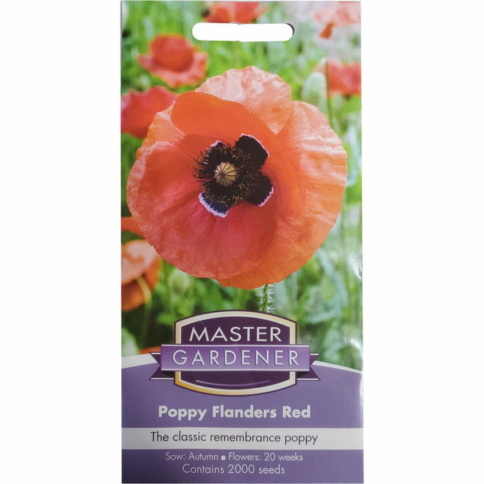 MASTER GARDENER Seeds - Poppy Flanders Red Remembrance