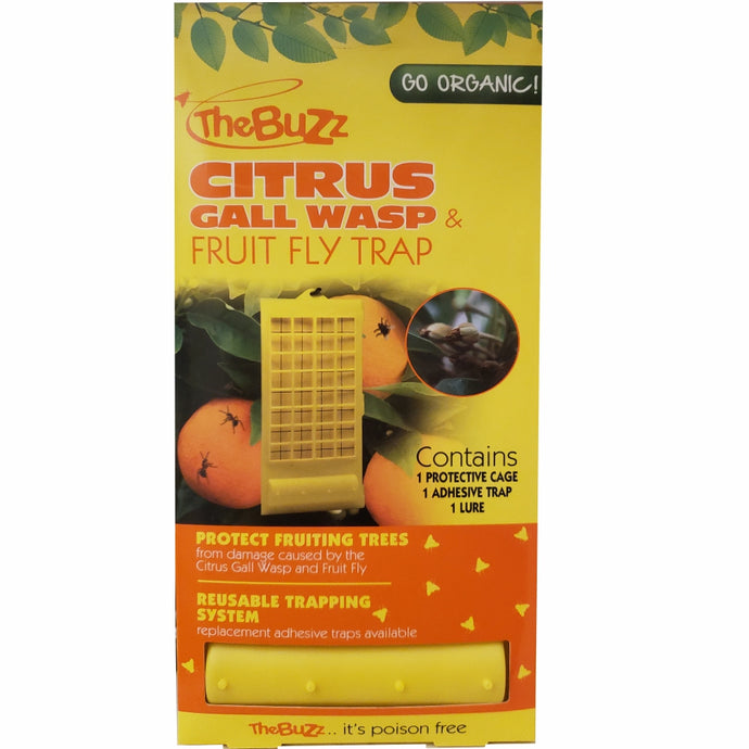 THE BUZZ Citrus Gall Wasp & Fruit Fly Insect Trap