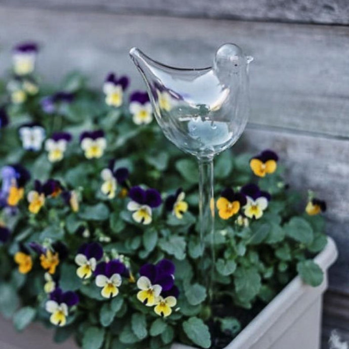 ANNABEL TRENDS | Plant Water Bubble - Bird