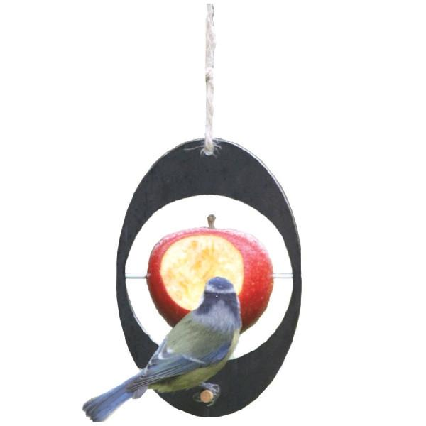 A SHORT WALK | ECO Apple Feeder - Bird Feeder  ASW/EBF
