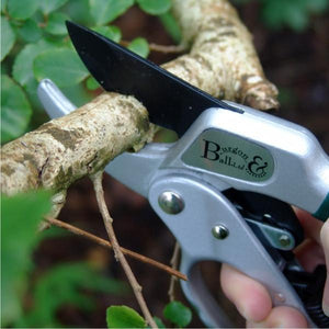 BURGON-and-BALL-Ratchet-Pruner-GTO-RP-Botanex