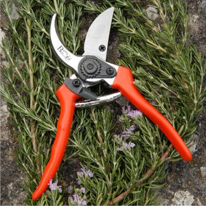 BURGON & BALL | Gardening Secateurs - Bypass ( includes replacement blade and spare spring)