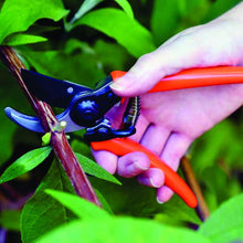 Load image into Gallery viewer, BURGON & BALL  |  Micro Secateurs - Terracotta in action