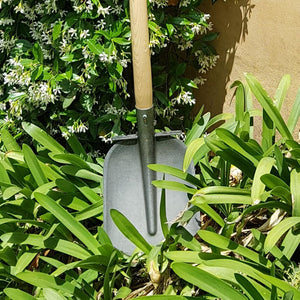 DEWIT | Batz / Sand Scoop / Dutch Shovel with steps - 1100mm Ash T-Handle