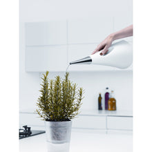 Load image into Gallery viewer, EVA SOLO | AquaStar Plant Watering Can - White