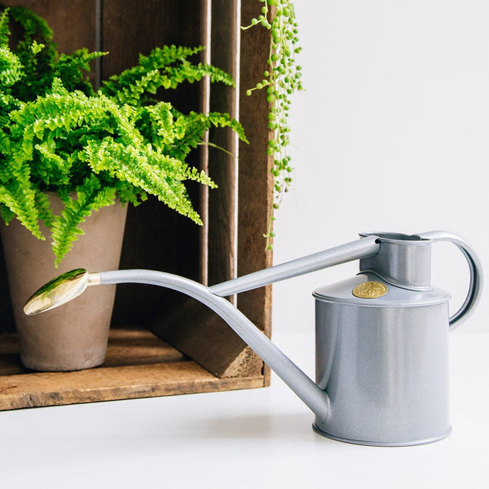 HAWS Gift Boxed Metal Indoor Plant Watering Can 'The Rowley Ripple' 2 Pint (1 Litre) - Titanium