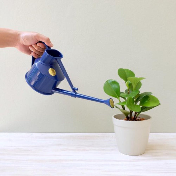 HAWS | Handy Indoor Plastic Watering Can 0.7 Litre - Blue