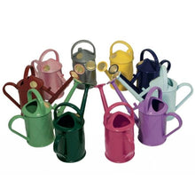 Load image into Gallery viewer, HAWS | 1 Litre Heritage Plastic Plant Watering Can - Sage Green