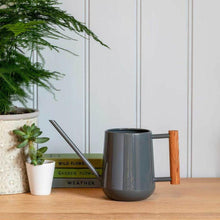 Load image into Gallery viewer, BURGON & BALL | Indoor Plant Watering Can - Charcoal