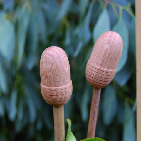 NUTSCENE® SCOTLAND  |  Wooden Oak Cane Toppers - SET OF 4