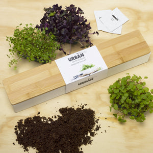 URBAN GREENS Microgreens Windowsill Box