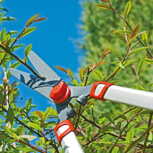 Trimming with the WOLF GARTEN | Telescopic Hedge Shears