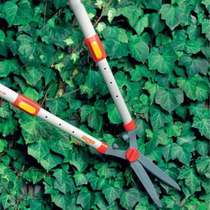 WOLF GARTEN | Telescopic Hedge Shears on the hedge