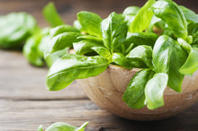 Load image into Gallery viewer, PLANTS CAN | Ceramic Herb Kit - Green Basil