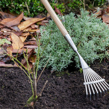 Load image into Gallery viewer, BURGON & BALL  |  Long Handled Shrub Rake - in the garden