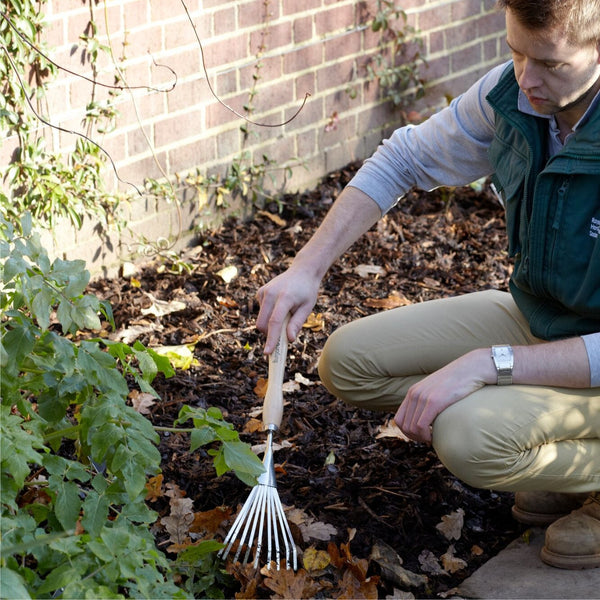 BURGON & BALL | Mid Handled Shrub Rake - in use