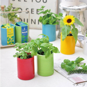 PLANTS CAN | Ceramic Herb Kit - Green Basil