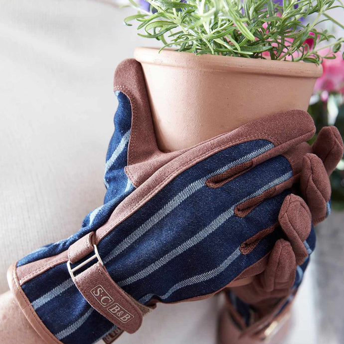 SOPHIE CONRAN Gloves - Ticking Stripe