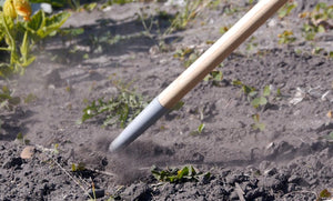 BURGON & BALL | Weed Slice - long handled digging