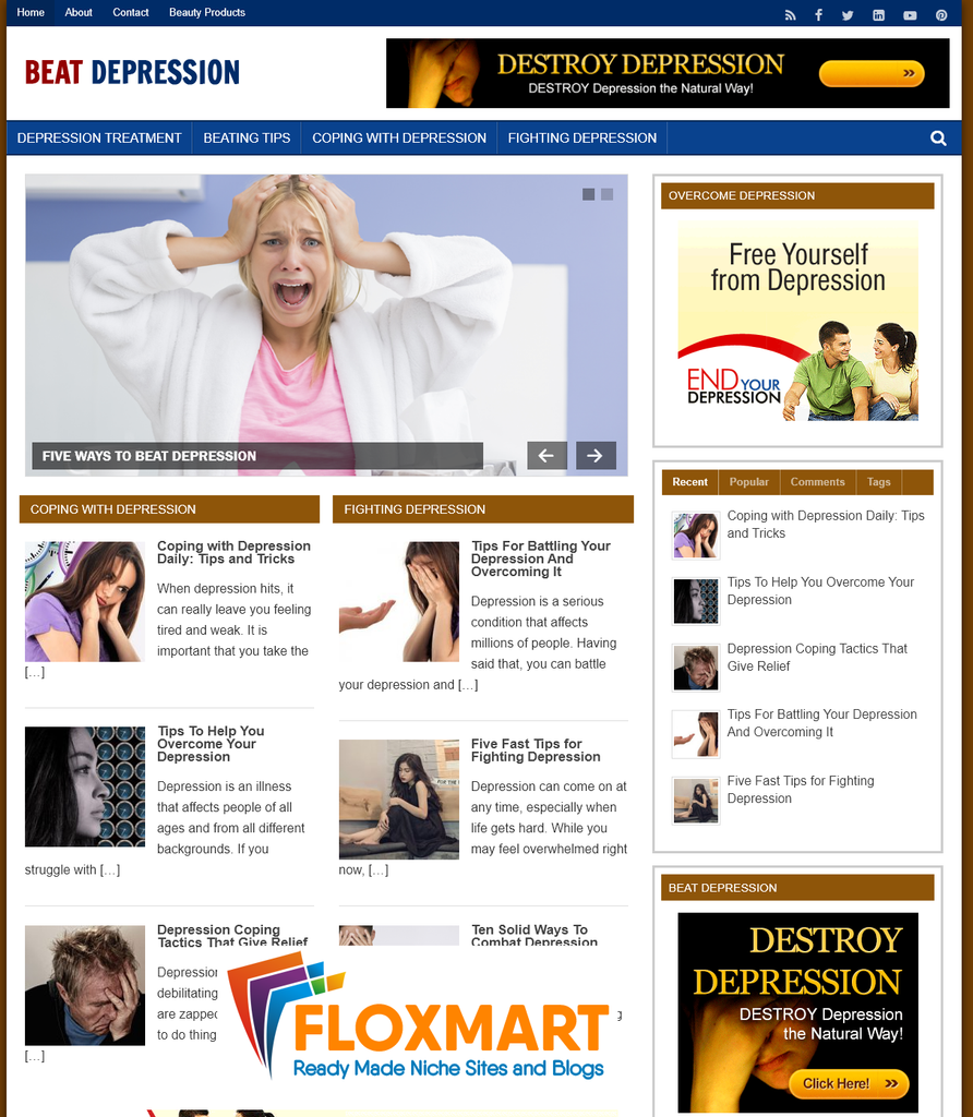 Beat Depression PLR Blog - Floxmart