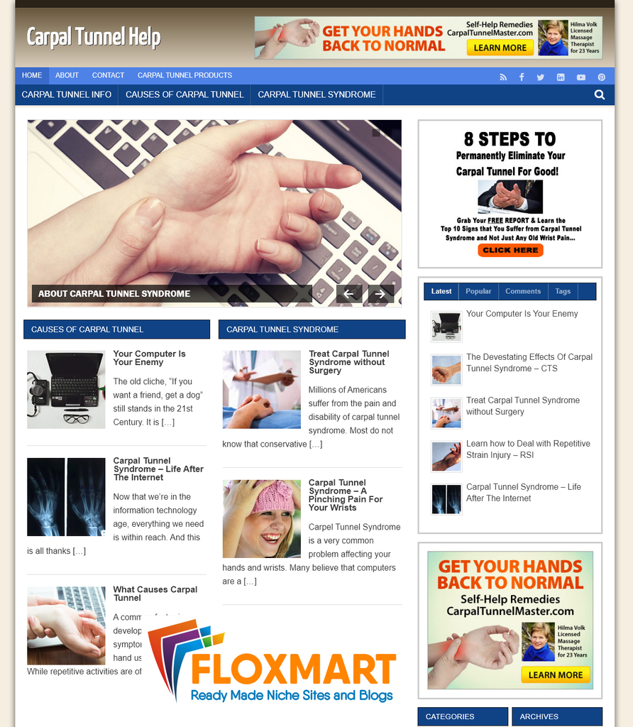 Carpal Tunnel Niche WordPress Blog - Floxmart