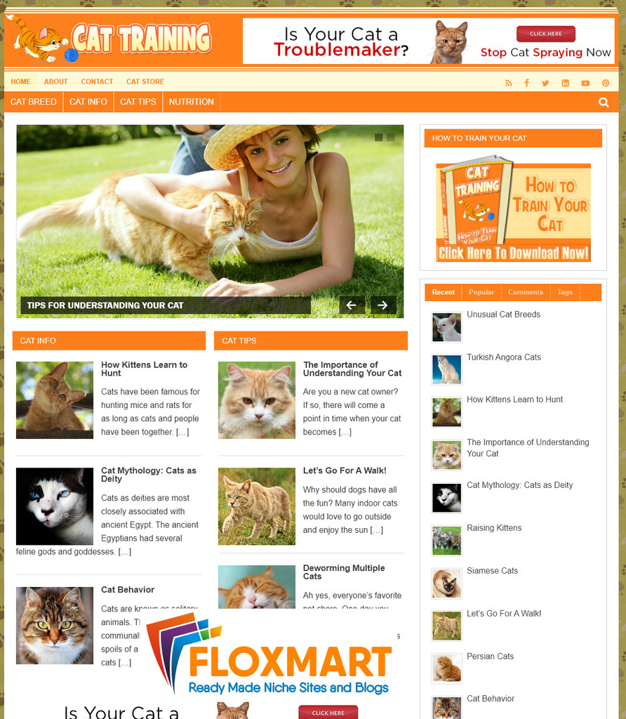Cat Training PLR Niche Blog - Floxmart