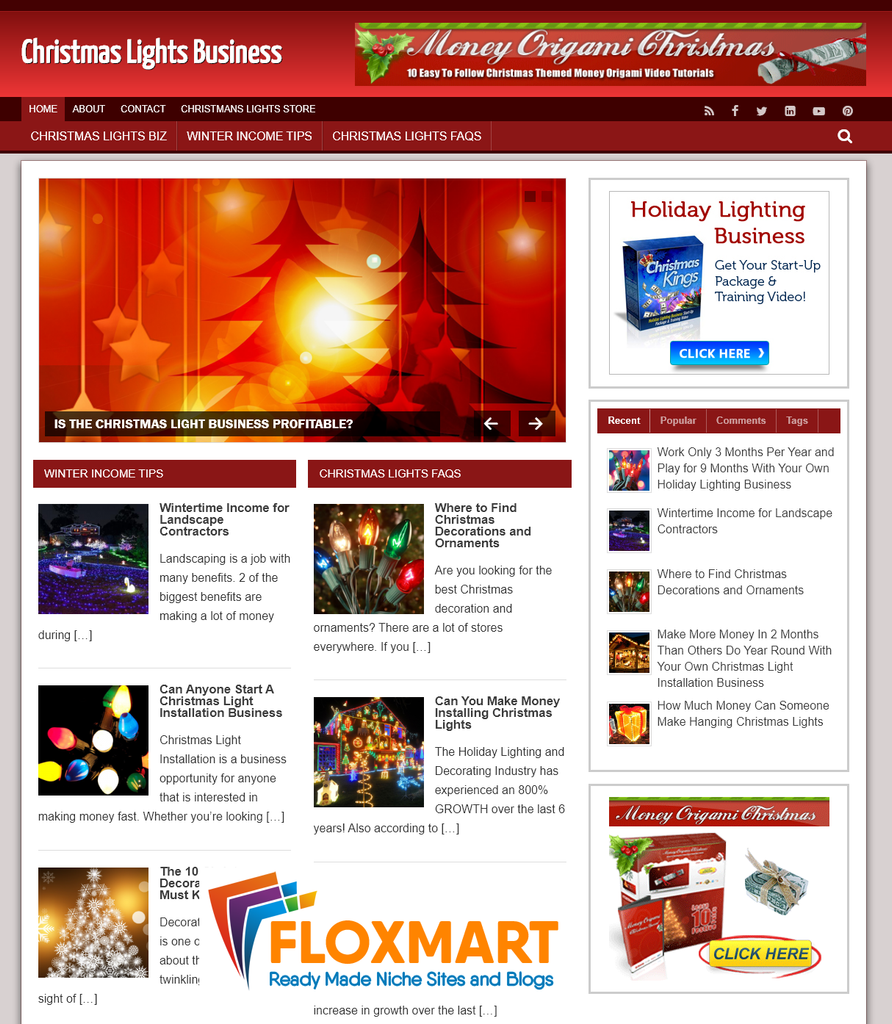 Christmas Lights Business PLR Blog - Floxmart