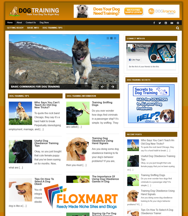 Dog Training PLR – Ready Made Blog - Floxmart