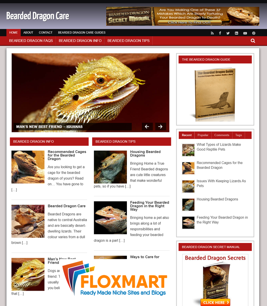 Bearded Dragons PLR Blog - Floxmart
