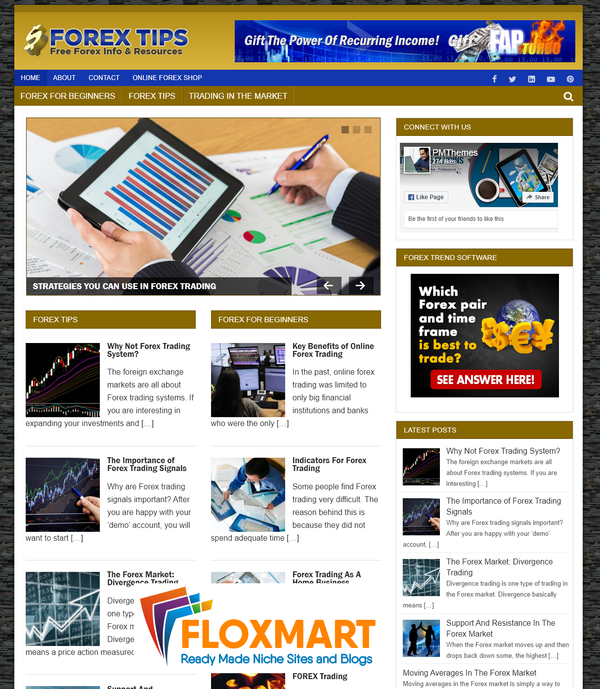 Forex Niche PLR Blog Package - Floxmart