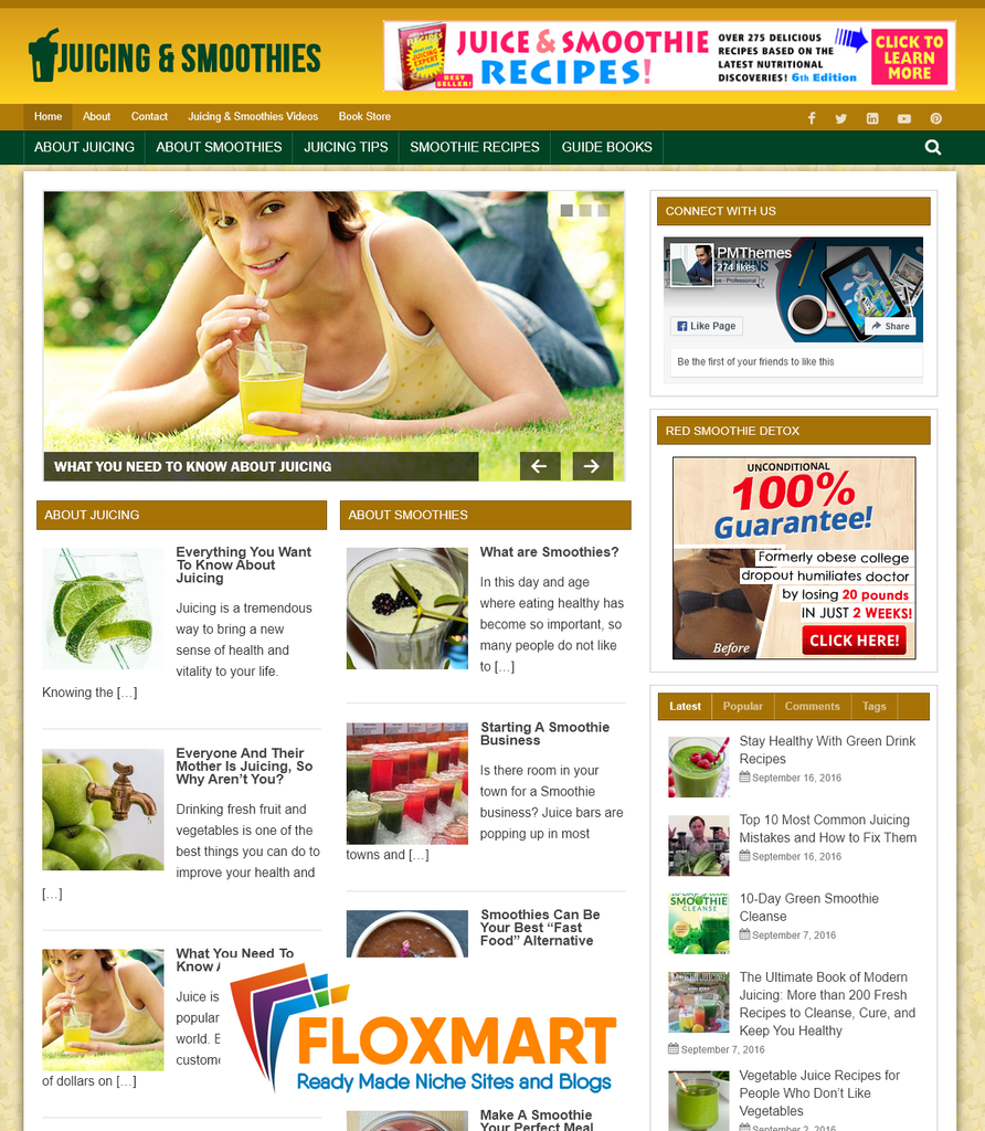 Juicing and Smoothies PLR Blog - Floxmart