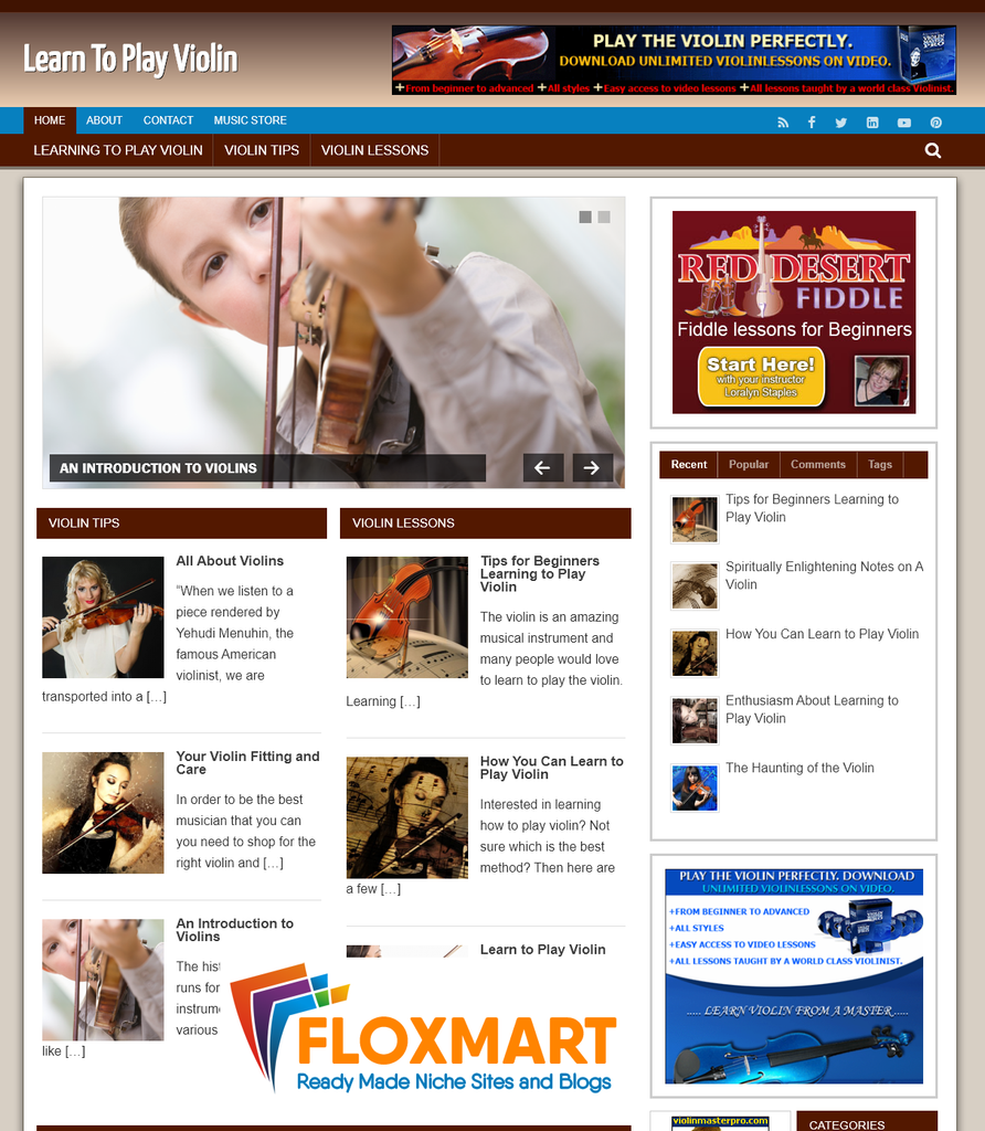 Learn to Play Violin PLR Site - Floxmart
