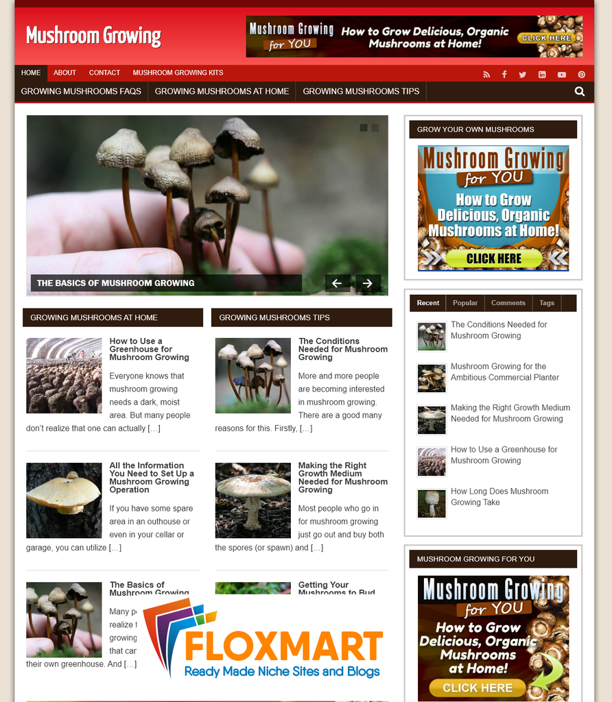 Grow Mushrooms PLR Blog - Floxmart