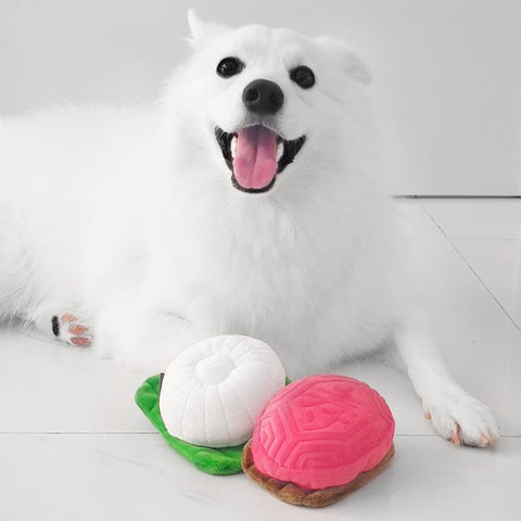 Furball Collective - Tutu Kueh Chew Toy