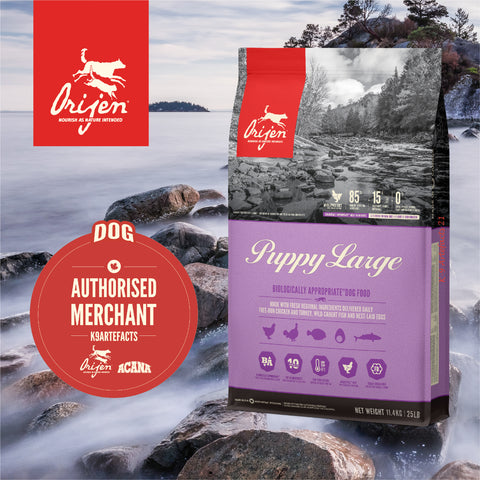 ORIJEN Puppy Large - Dog Dry Food (11.4kg)