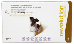 Revolution for Small Dogs (5 to 10kg)