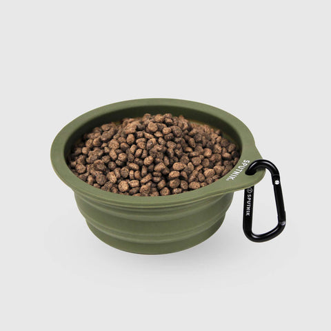 Sputnik Collapsible Travel Bowl - Green
