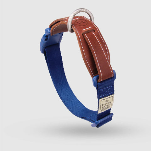 Sputnik Dog Collar - Blue (3 sizes)