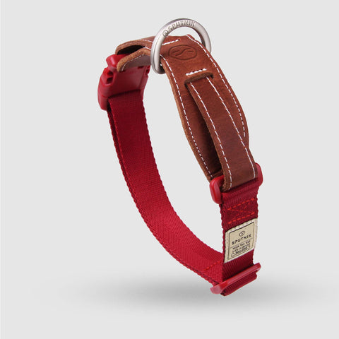 Sputnik Dog Collar - Red (3 sizes)