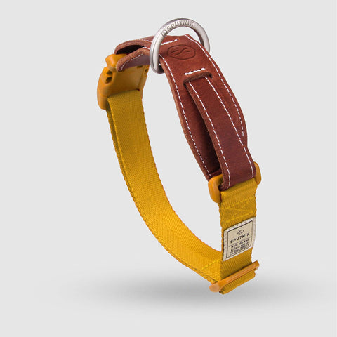 Sputnik Dog Collar - Yellow (3 sizes)