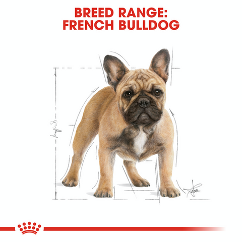 Royal Canin - French Bulldog Adult Dry Dog Food (3kg)