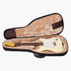 RB30 Electric Guitar Case