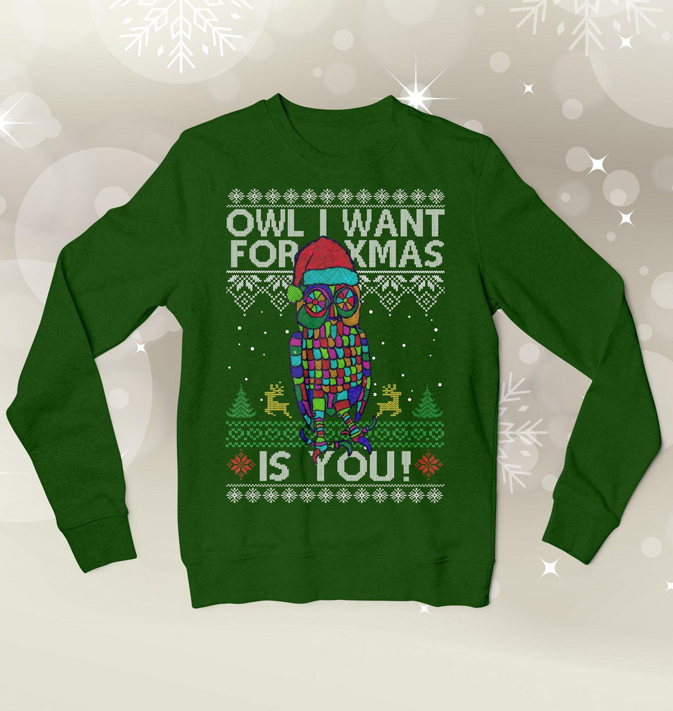 Owl I Want Is You Ugly Xmas Sweater Sweatshirts Hot Merch Small Green