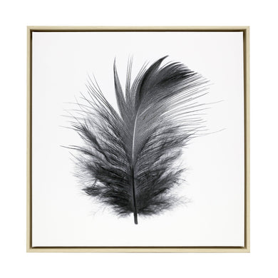 Black Feather Framed Canvas - 64x64 - Vida Style