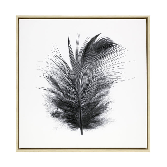 Black Feather Framed Canvas - 64x64