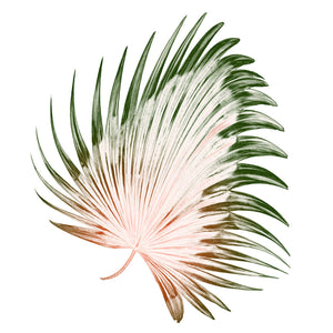 Dancing Palm Canvas Wall Art - 60x60 - Vida Style