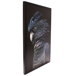 Midnight Black Cockatoo Canvas Wall Art - 40x60 - Vida Style