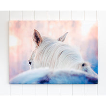 Load image into Gallery viewer, Dusty White Horse Canvas Wall Art - 70x50 - Vida Style