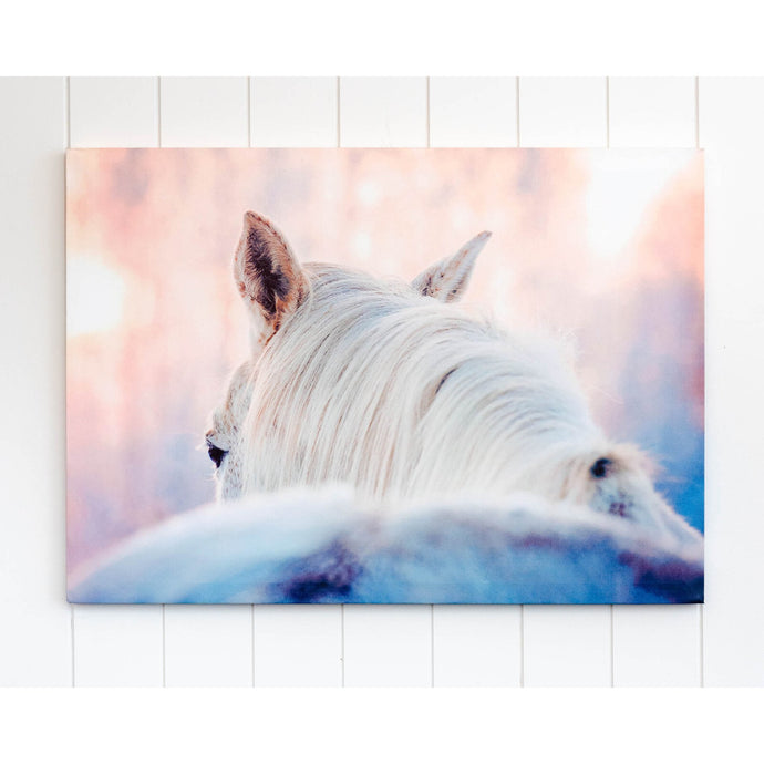 Dusty White Horse Canvas Wall Art - 70x50 - Vida Style